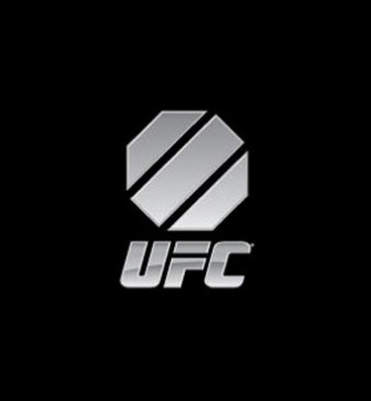 UFC Game for PC