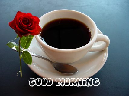 Whatsapp Good Morning Images Photos Pictures Sms 2019
