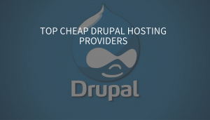 TOP Best Rated Drupal Hosting Service Providers Of 2016