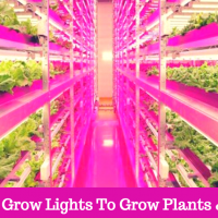 Cheap Led Grow Lights For Plants & Flowers