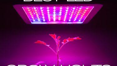 best 1000w led grow light