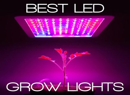 best 1000w led grow light
