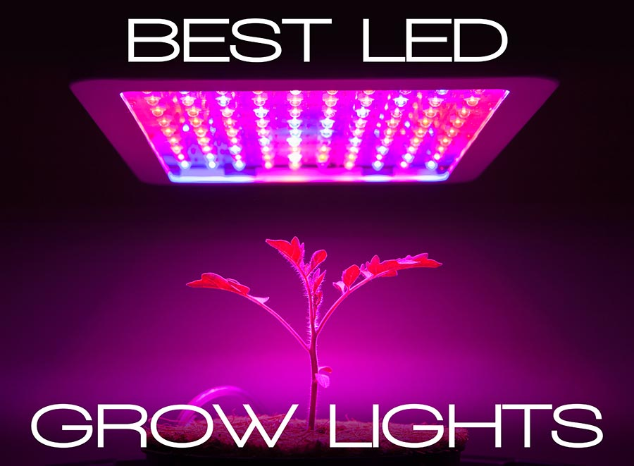 Image result for LED grow lights