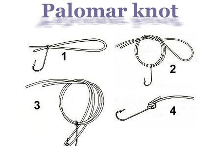 Tie Palomar Knot