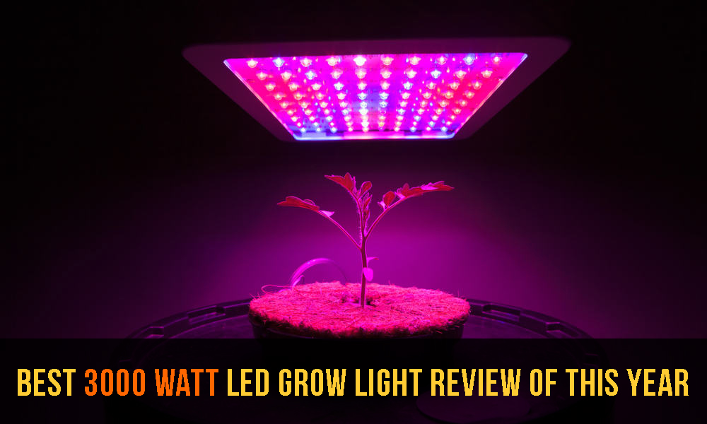 10 Best 3000 Watt LED Grow Light Review of This Year