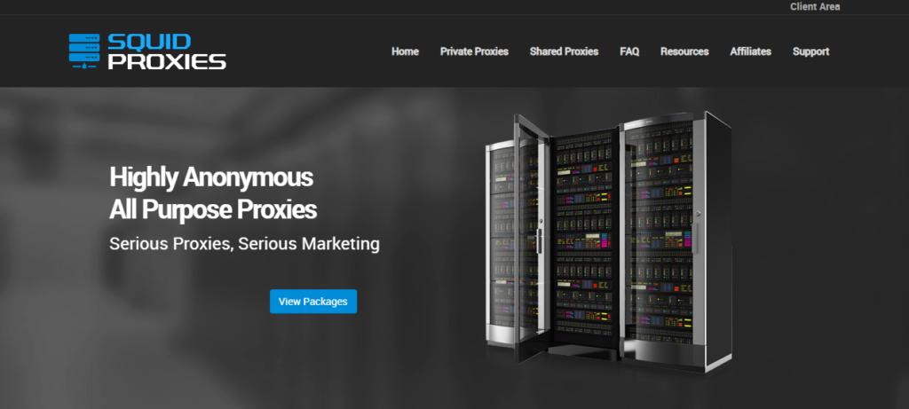 Squid Proxies