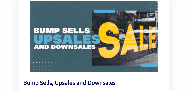 Builder Bump Sales
