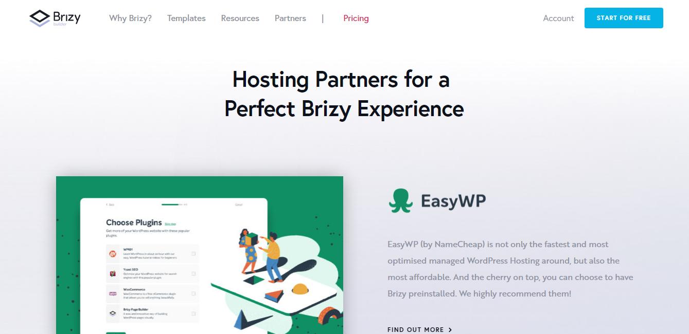Brizy Hosting partner