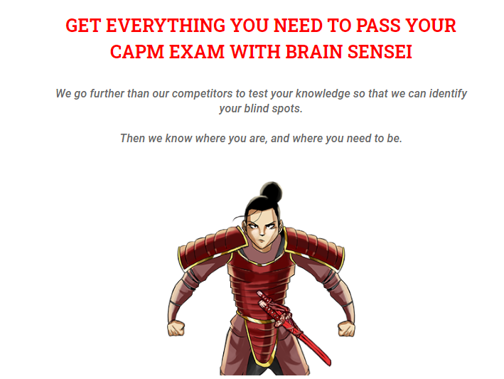 CAPM course - Brain Sensei