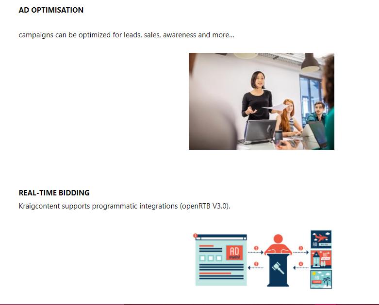Ad Optimization & Real-time bidding - KraigContent