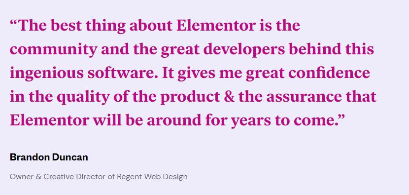 Elementor customer Testimonial