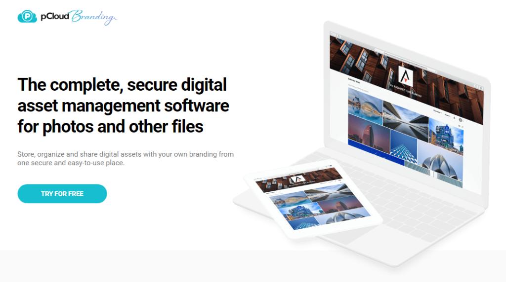 Digital Management Asset